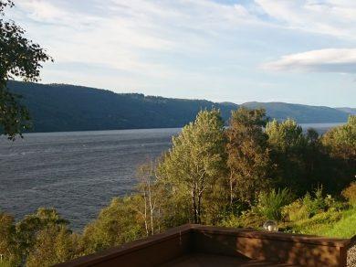 Lasta-Grip-Coppered-Lake